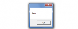 Exemplu script VBS Windows